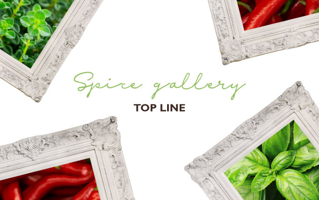 Spice Gallery